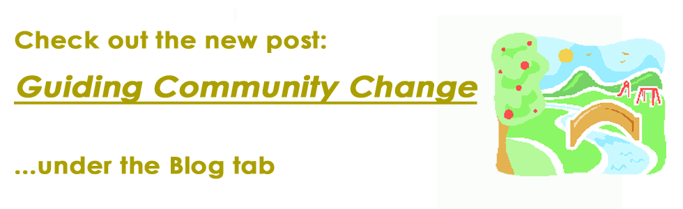 Guiding Community Change